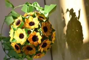 Sunflower by cridiana