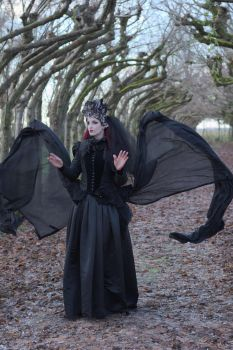 Stock - Gothic woman flying wings 1 by S-T-A-R-gazer