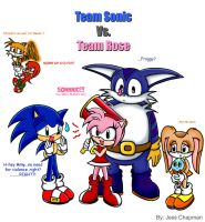 Team Sonic   Vs.   Team Rose by Dark-Jessa