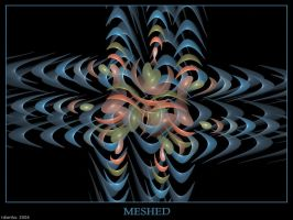 Meshed by tdierikx