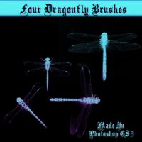 Dragonfly Brushes by dollieflesh-stock
