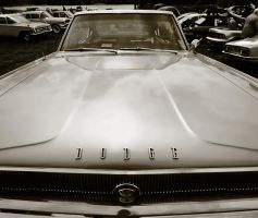 Dodge Charger by CharmingPhotography