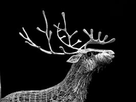 Stag black edit by braindeadmystuff