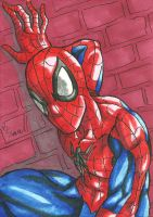 Spider-Man Sketch Card by ibroussardart