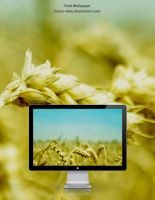 Field Wallpaper by mACrO-lOvE