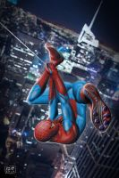 The Amazing Spider-Man by popmuzic