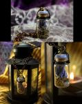 SOLD Deadly Nightshade Steampunk Jewelry #8 by DarcarinJewelry