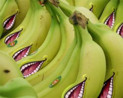 lolwut bananas by lolwutbanana