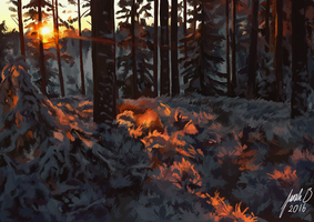 Snow forest by BlibaBlob