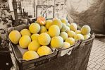 colour of Melons by GraceDoragon
