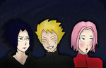Request-Team 7 and the stars by daisy4everninsim