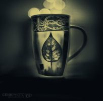 cup by cenkphoto