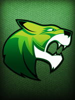 Novi High School Wildcat Mascot by FluidStudios