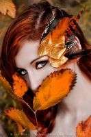 Lady Autumn 01 by MeetMeAtTheLake2Nite