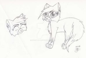 Cat Sketches by epicitaly