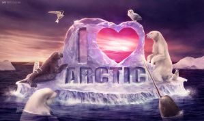 i heart arctic by vesner