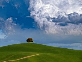 Tuscany 7 - Print by rschoeller