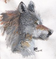 A more Realistic wolf by Jesse-The-Ookami