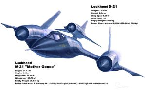 Lockheed M-21 Mother Goose by hylajaponica