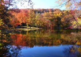 Spy Pond Autumn by body-electric