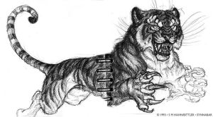 Tiger God 1993 - WITH SPINE XD by synnabar