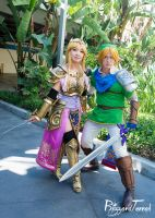 AX15 - Hyrule Warriors by BlizzardTerrak