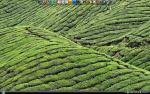 My XP Desktop by GunterServin