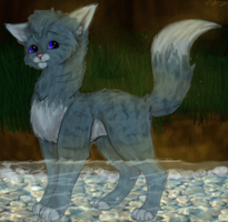 Sapphire-Eyes of RiverClan by Cabooselover