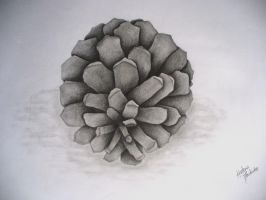 Pinecone by Lena-LU