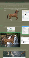 how to make a horse manip. by BaukjeSpirit