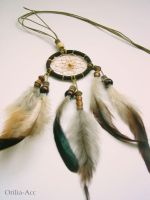 Dream Catcher the Brown by aurilianalence