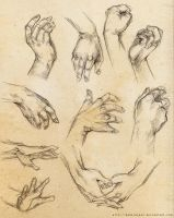 [Practice] Hands by DamaiMikaz
