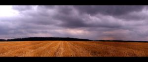 Quiet before the Storm by JoInnovate