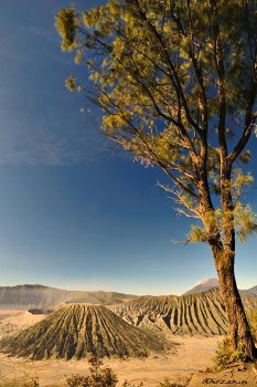 Other Side of Bromo by hirza