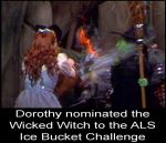 Dorothy nominated the Wicked Witch by Brandtk