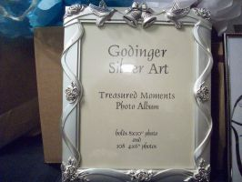 Wedding Gift #2: Picture frame/album by SupernovaSword