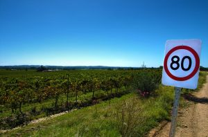 Barossa Valley Slows Down by Mutilator-Of-Cookies