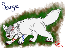 Sarge by Zs99
