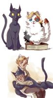 Cat Omens by lord-october