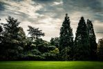Jardin du Thabor by VicDeS-P