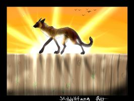 ~: Maybe tomorrow is a better day.? :~ by skywolffang