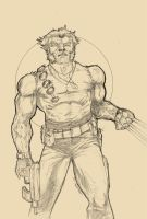 Wolverine Pencils by Anmph