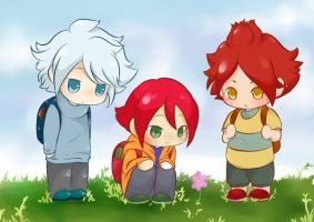 Inazuma Eleven: 3TOP 'Flower' by dokkyunheart