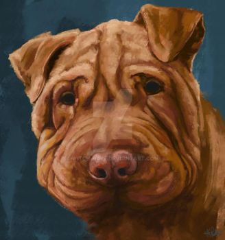 Sharpei by Witch-Haze