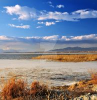 Utah Lake Early March Thaw by houstonryan