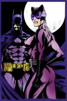Batman and Catwoman by Dante-Picasso