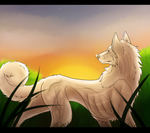 YCH Finished: At Dawn by SpiffyInu