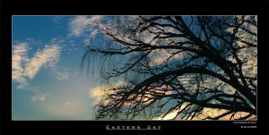 Eastern Sky by patu-