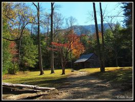 Cades Cove Cabin by MariusStormcrow