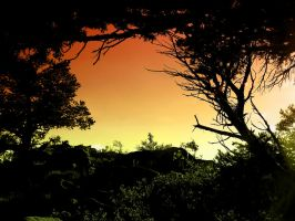 The Setting of the Sun by Morna